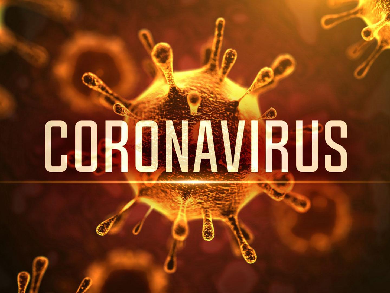 saudiarabiareports695newcoronaviruscases