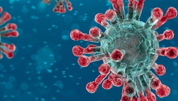 confirmedcoronaviruscasesinpakistanriseto237