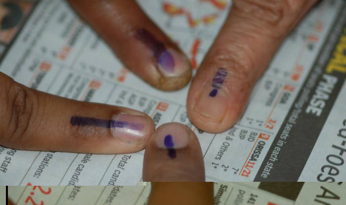 83% Voter Turnout in Goa, Highest Till Date