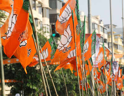 BJP announces candidates for Andhra Pradesh