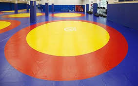 Asian Wrestling Championship begins in New Delhi today