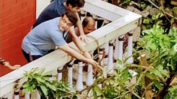 Sourav Ganguly fixes a mango tree in his house, got uprooted due to the Cyclone Amphan