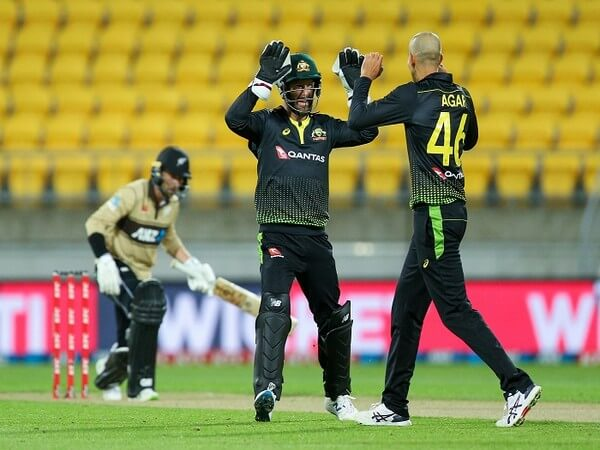 Australia thrash New Zealand by 64 runs in 3rd T20I