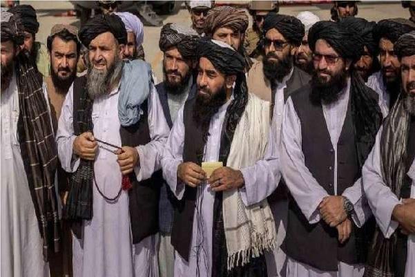 At Least 14 Members Of Taliban