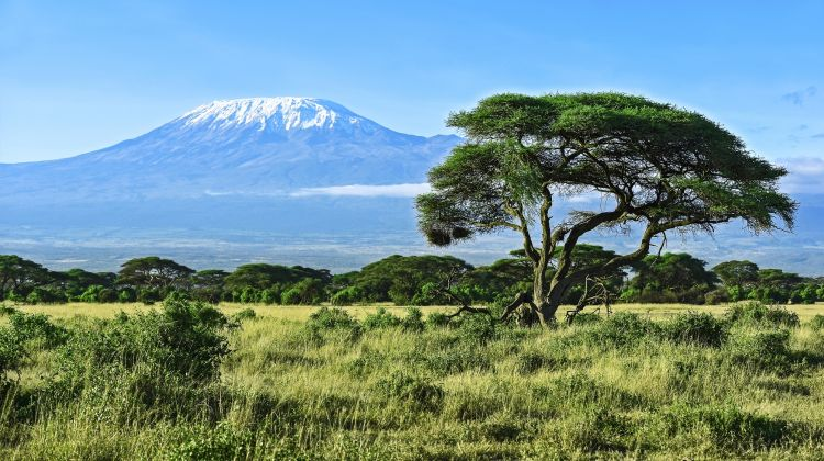 43-member team scale Mount Kilimanjaro