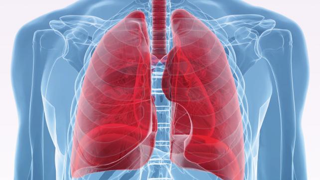 World lung meet in Hyderabad