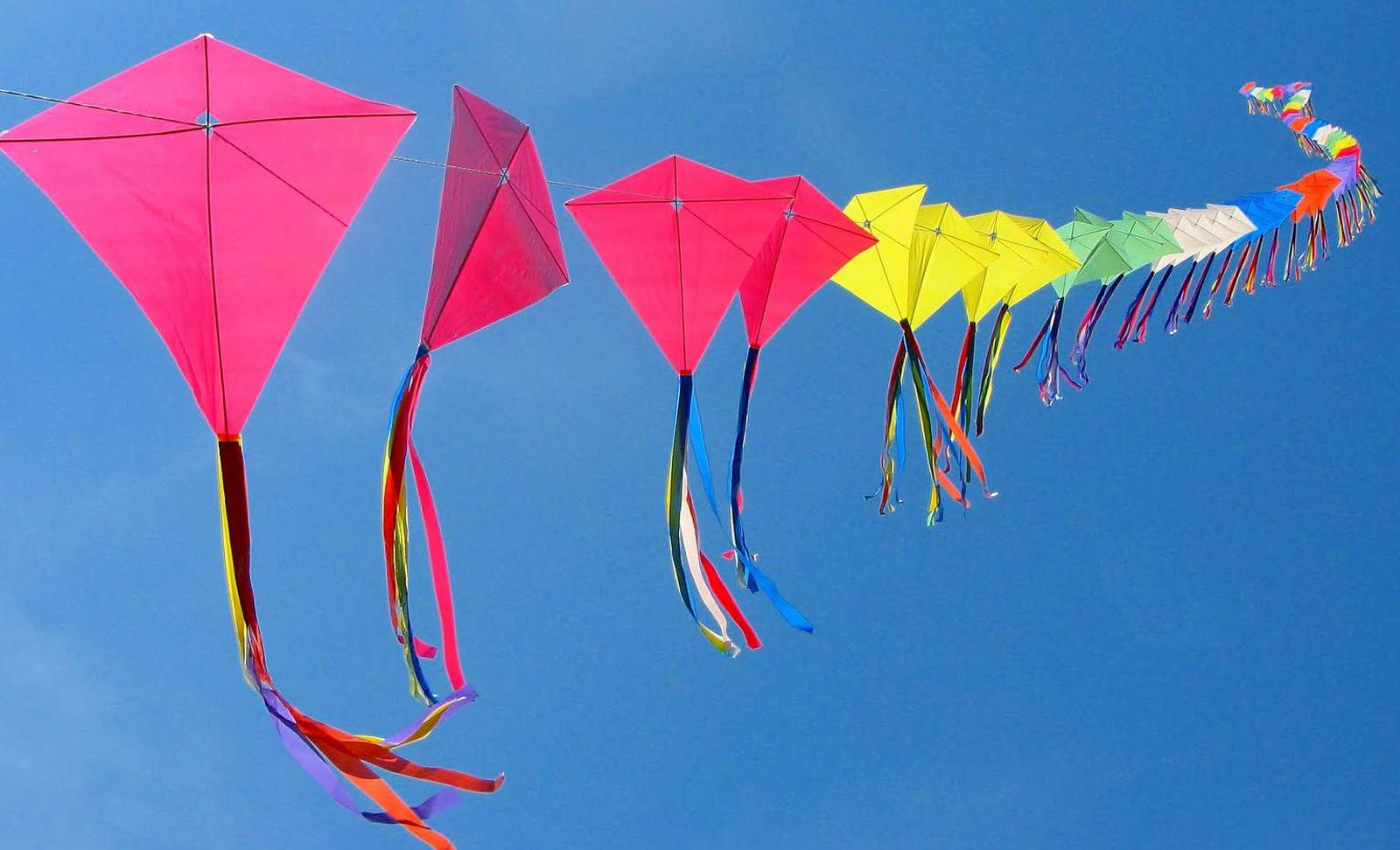 kiteandsweetfestival2021cancelledinhyderabadduetopandemic