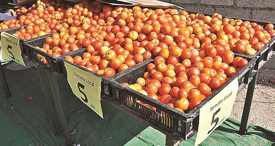 Minimum support price for tomato at Rs.5/kg