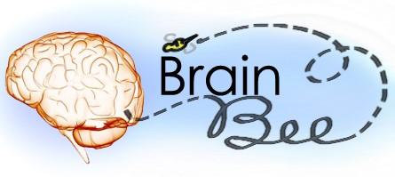 hyderabadgirlwins'brainbee'regionalcompetition