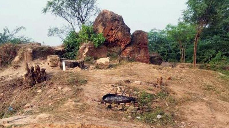 4,000-yr-old bone ornaments found in excavation near Hyderabad