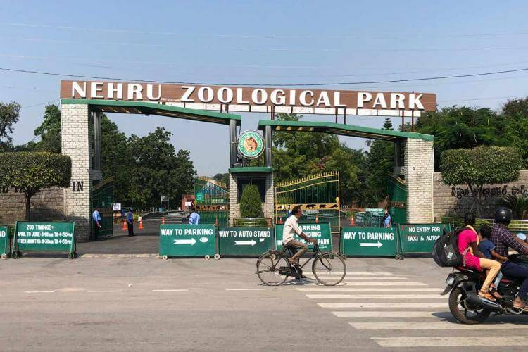 nehruzoologicalparkwillopenforvisitorsfromtomorrow