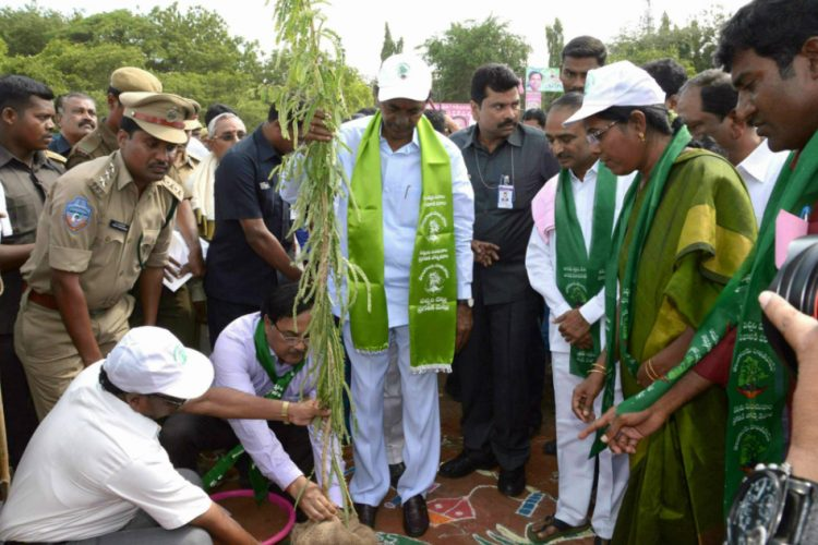 Officials non-seriousness about Haritha Haram is a cause of concern: CM KCR