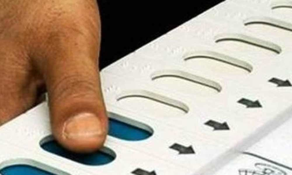 443 candidates remain in fray for 17 LS seats