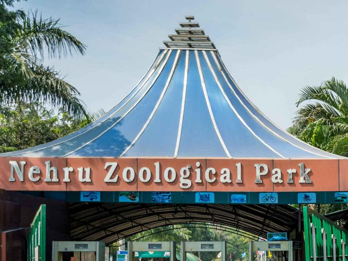 zoosnationalparkstoreopentomorrow