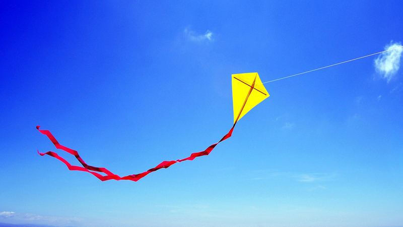 Telangana government permits flying of kites with cotton thread