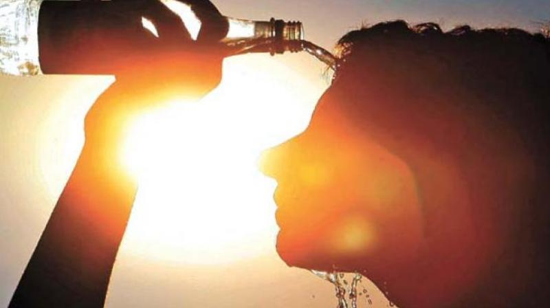 IMD forecasts rise in temperature in Hyderabad