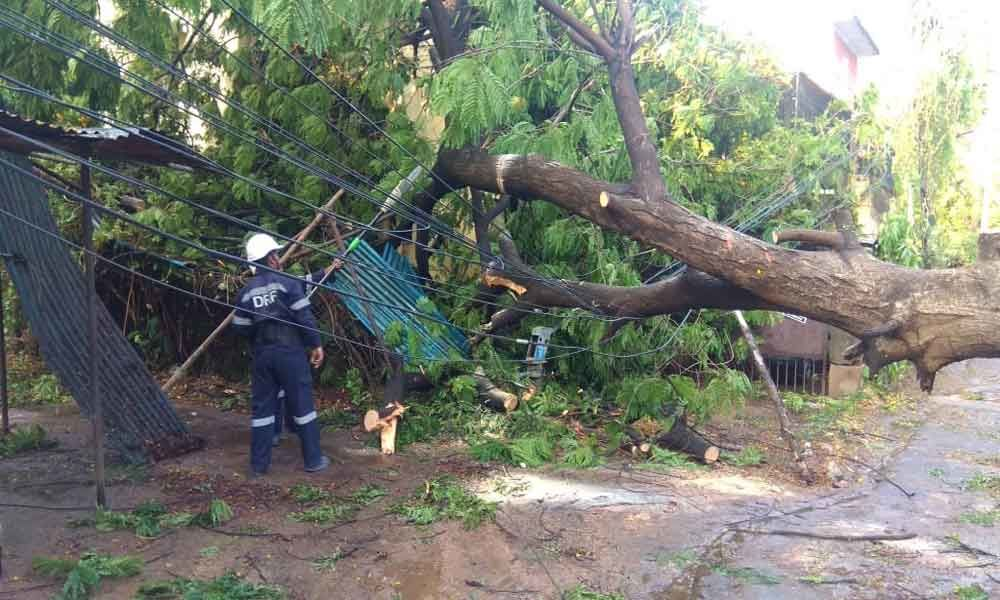 Gusty winds take two lives in Hyderabad