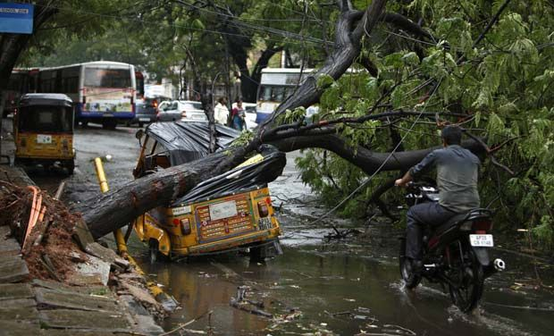 Heavy rains lashed in Hyderabad today; trees uprooted