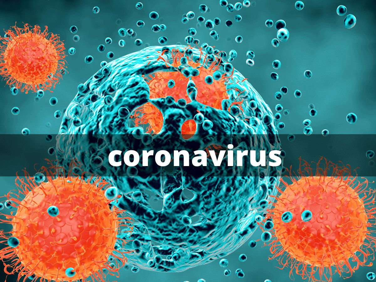 No coronavirus positive cases in Telangana