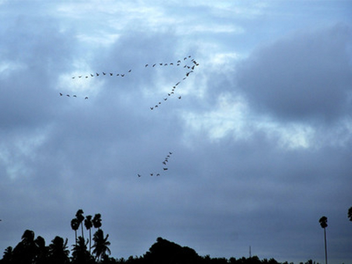Monsoon likely to hit Telangana by June 8