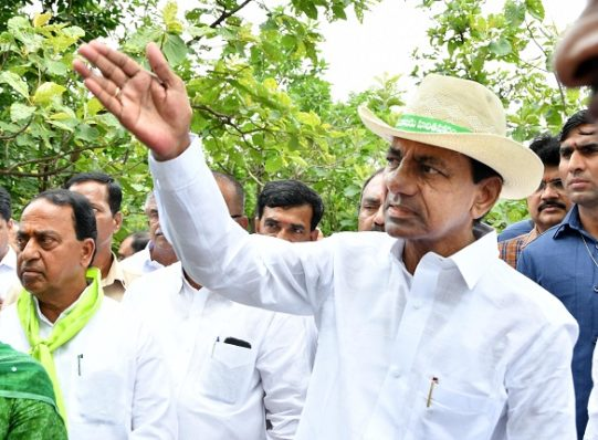 KCR stresses revival of forests across Telangana