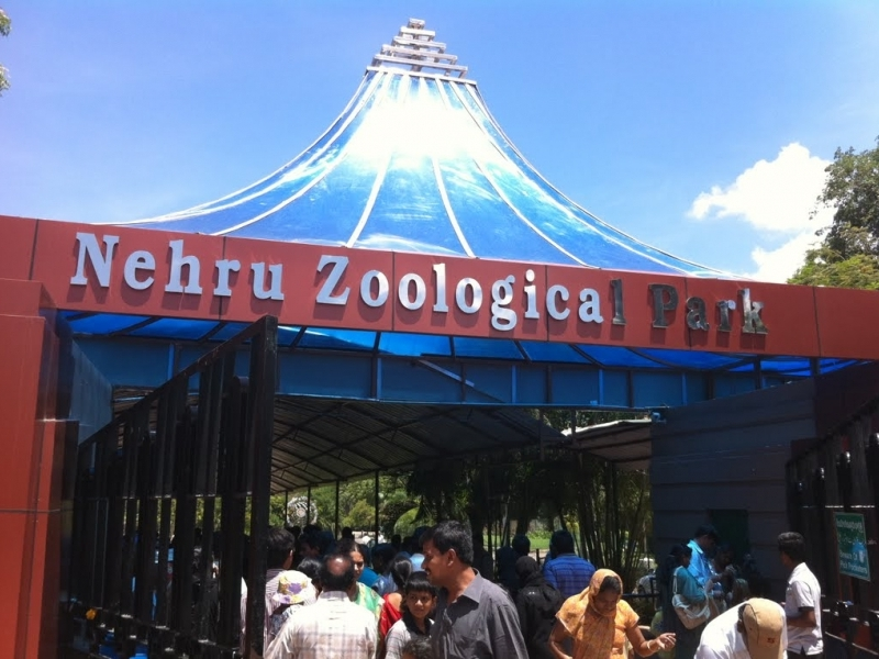 Nehru Zoological Park to remain closed today