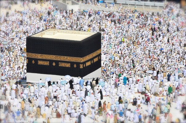 Online Haj applications from Oct 23: TS Haj Committee