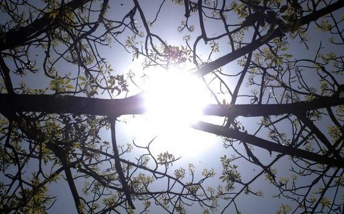 Temperature soars in Telangana State