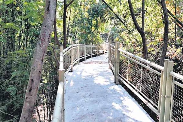 KTR urge people to visit urban forest parks
