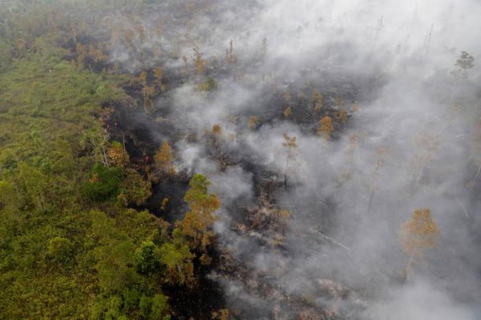 Indonesian police arrest hundreds linked to forest fires