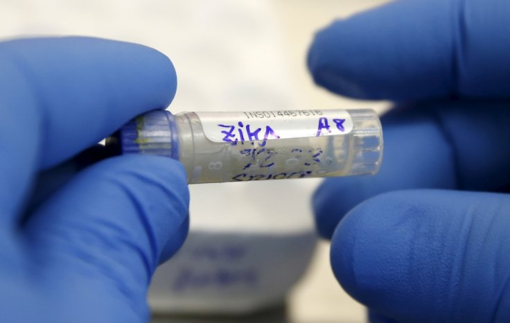 Zika virus transmitted through sex comes up in US