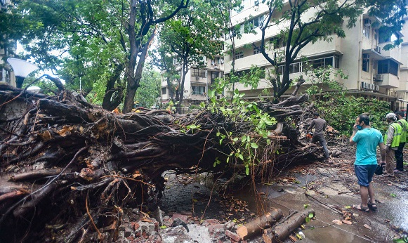 Three people died in Cyclone Nisarga, heavy rain wreaks havoc in Maharashtra