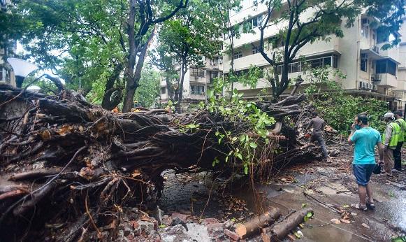 Three people died in Cyclone Nisarga, heavy rain wreaks havoc in Maharashtra