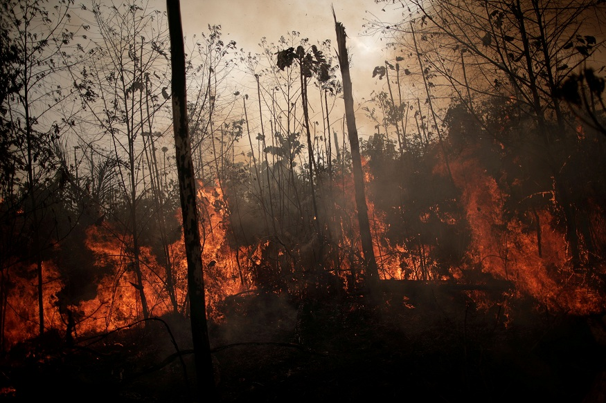 Hundreds of new fires flare up in Amazon forests