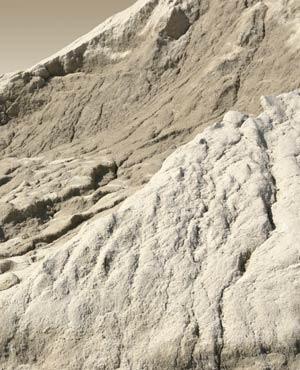 At least 12 killed in Ethiopia landslide: state media
