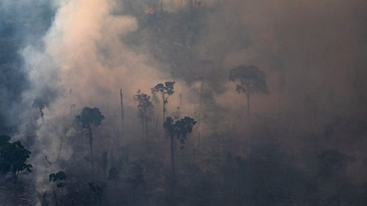 Amazon fires: Brazil bans setting fires to clear land for 60 days