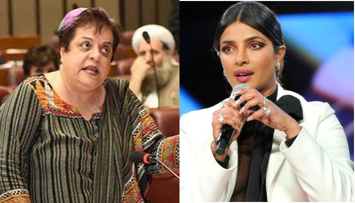 Remove Priyanka Chopra as Goodwill Ambassador: Pakistan Human Rights Minister to UN
