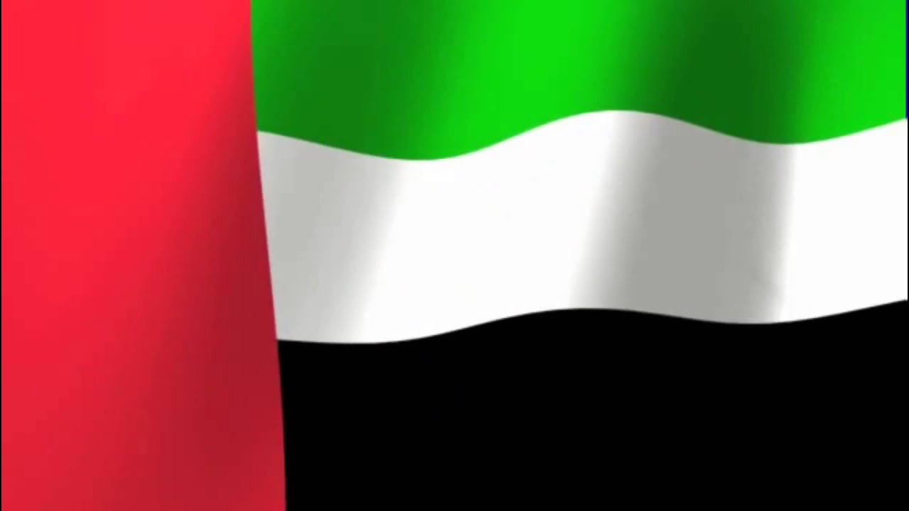 UAE ready to cooperate with Saudi Arabia in facing possible oil supply disruption: UAE Minister