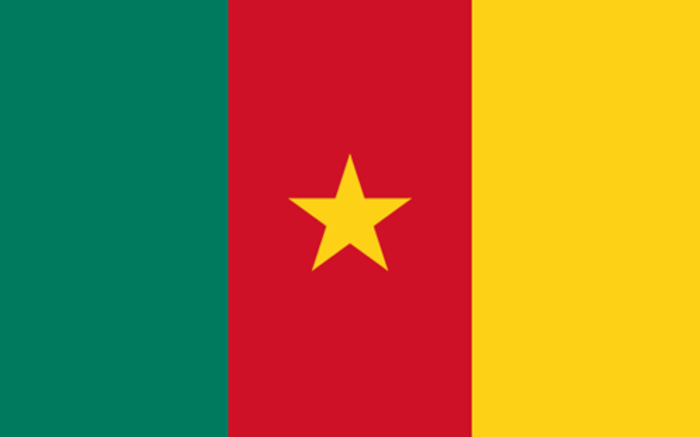 Cameroon: 79 school students abducted by gunmen this week are freed