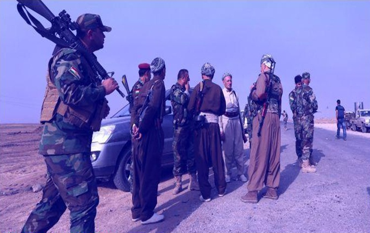 Iraq dismantles biggest cell of IS terror group in western Anbar province