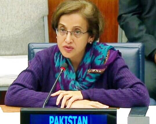 Tehmina Janjua accuses India of using Afghan soil for militancy in Pakistan