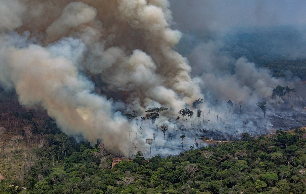 Brazil rejects G7 aid to fight Amazon fires: Government Official