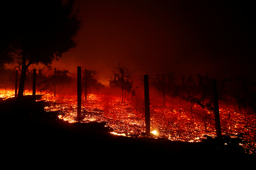 Death toll from California wildfires rises to 59