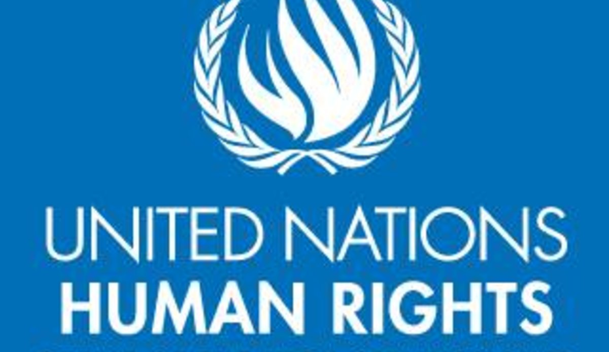 UN Human Rights investigator calls on UNSC to impose global arms embargo, economic sanctions on Myanmar