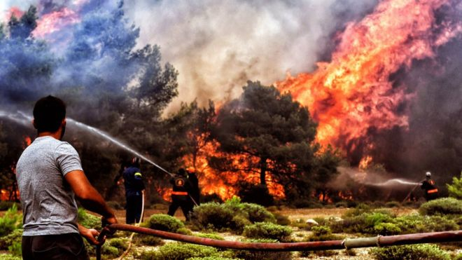 Death toll from Greek forest fire rises to 93