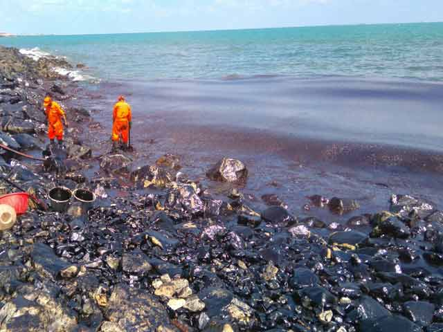 Sea off south Chennai is mostly cleared of oil spill