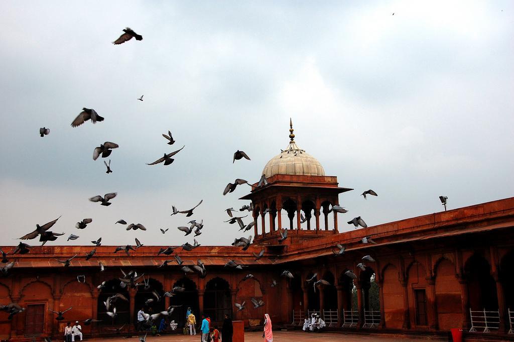 Cracks found in Jama Masjid dome need to be fixed , shahi imam seeks PM