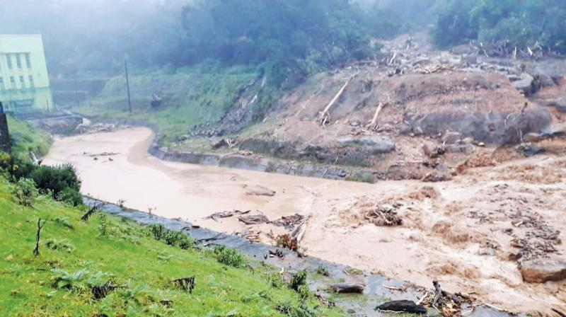 Heavy rain pounds Nilgiris district in Tamil Nadu