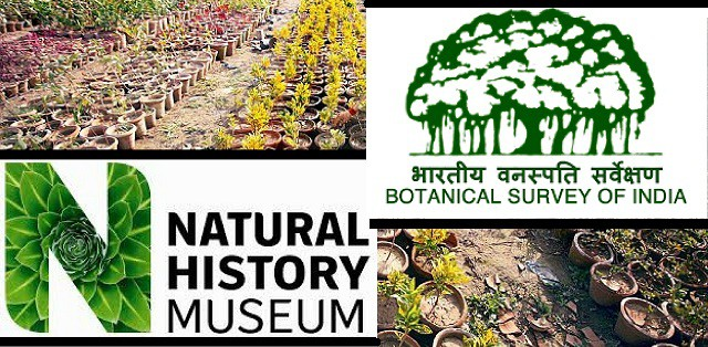 MoU Signed between Botanical Survey of India and Natural History Museum, UK