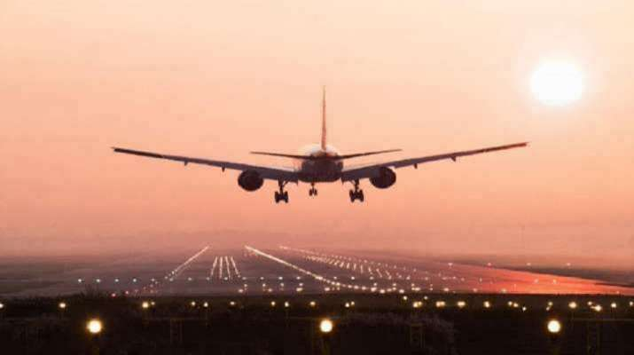 Government extends ban on commercial international flights till March 31